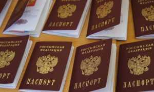 Как правильно написать заявление на получение российского гражданства