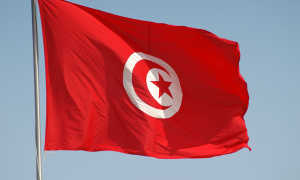 Виза в Тунис: правила безвизового въезда, виды виз и документы для их получения, сроки и стоимость оформления