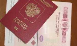 Виза в Австрию: нужна ли, документы для получения, сроки и стоимость оформления, причины отказа