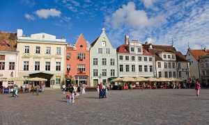 Виза в Эстонию: виды виз и документы для их оформления, сроки оформления и стоимость, причины отказа