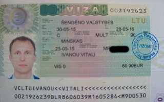 Виза в Литву: виды виз, необходимые документы, стоимость и сроки оформления, причины отказа